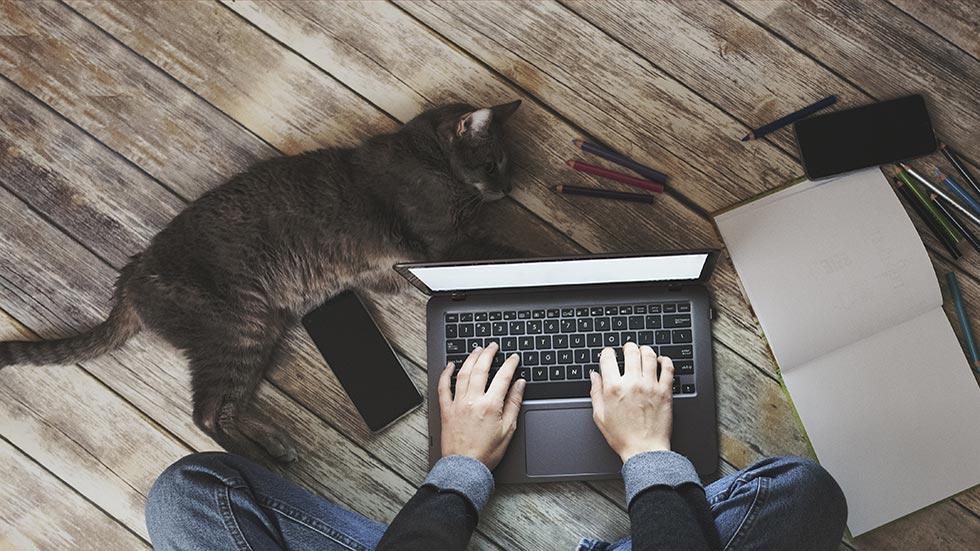 5 tips för bästa jobba-hemma-upplevelse