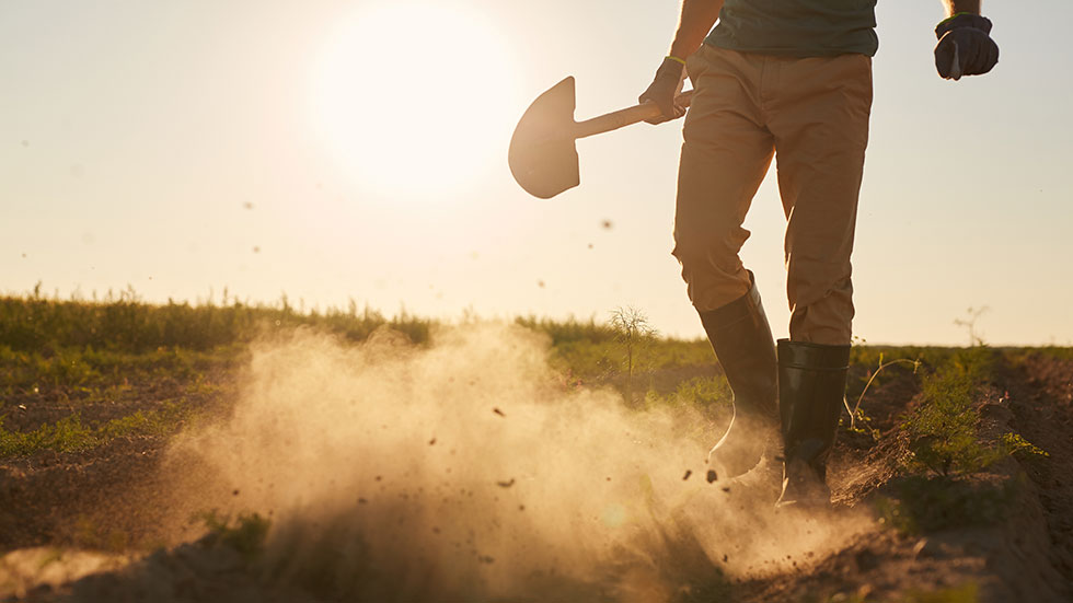 Hur du kan öka din omsättning med 10% genom att gräva där du står